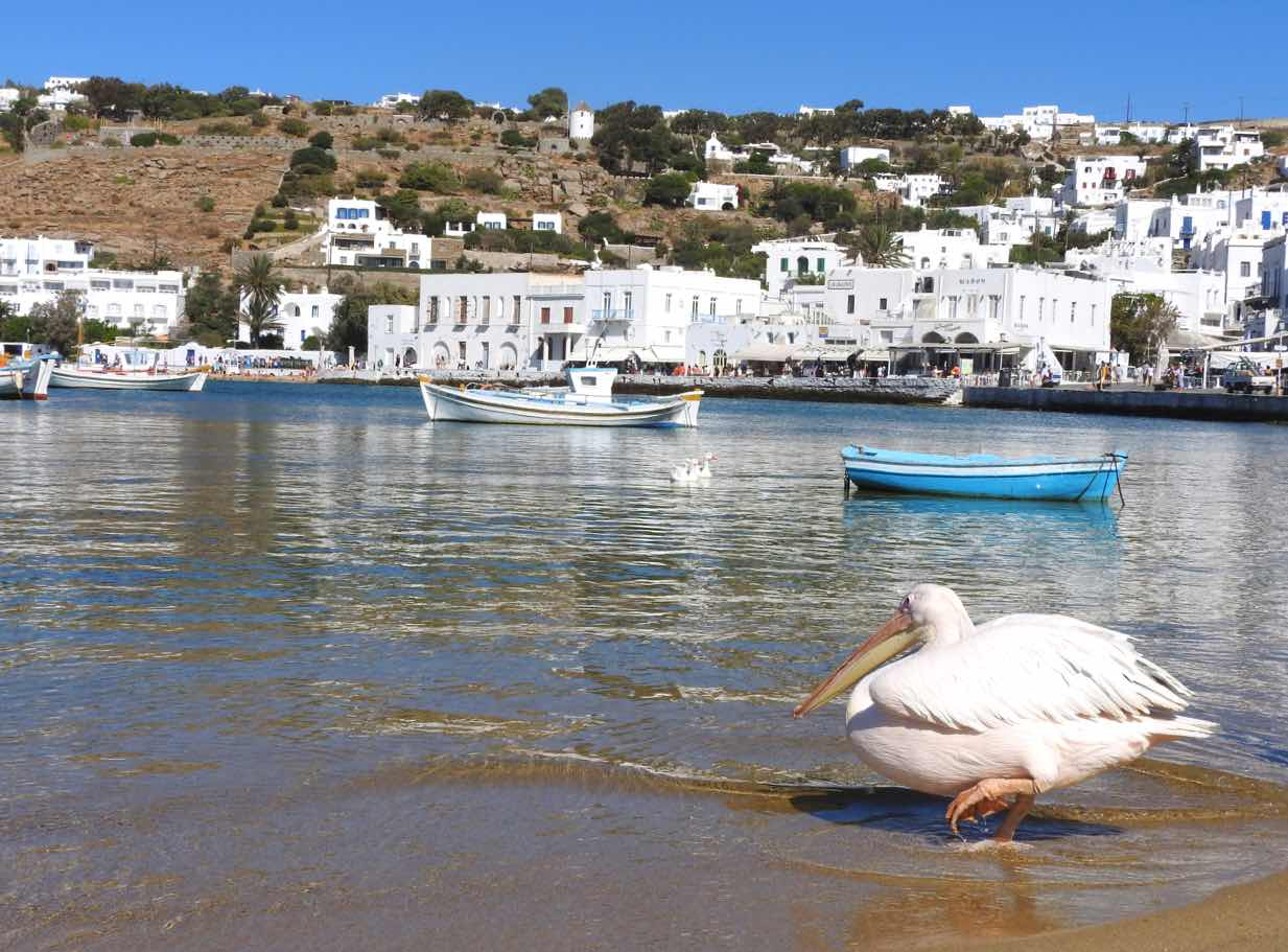 greece itinerary mykonos travel guide pelican