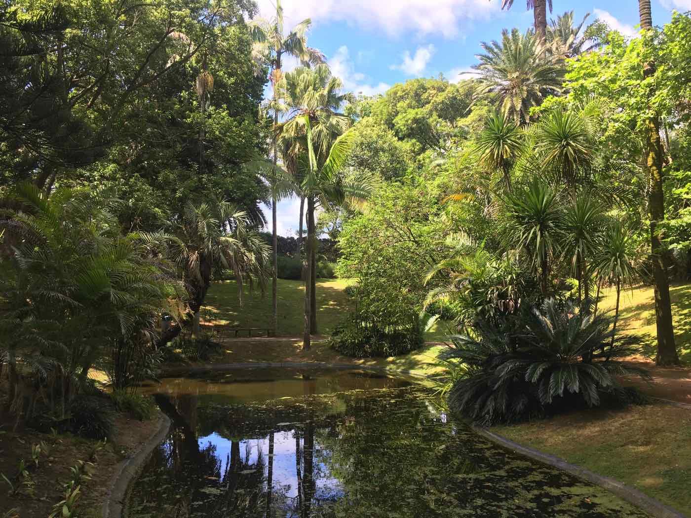 ponta delgada azores gardens antonio borges park