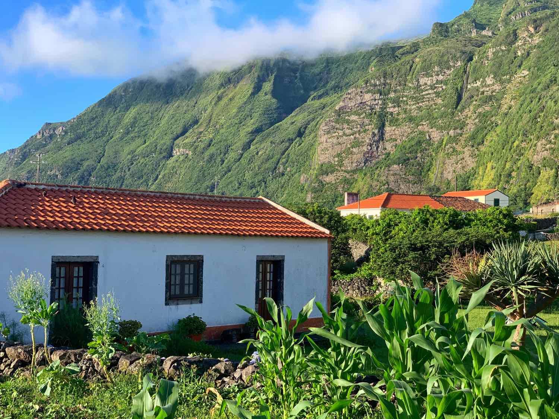 flores azores guide faja grande houses